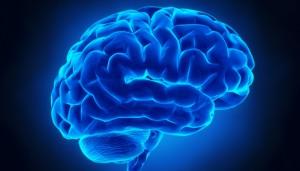 Study on Memory Loss