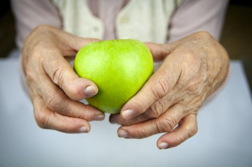 Gut Bacteria May Help Prevent This Debilitating Disease