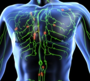 Lymphatic Health: The Key to Ultimate Detox