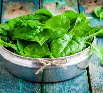 Keep Your Brain Young With This Little Known Nutrient