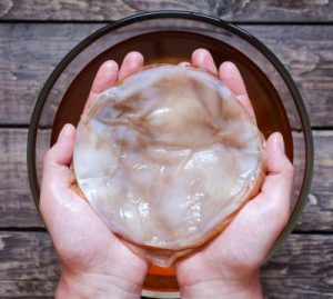 What is Kombucha? 5 Reasons You Should Know