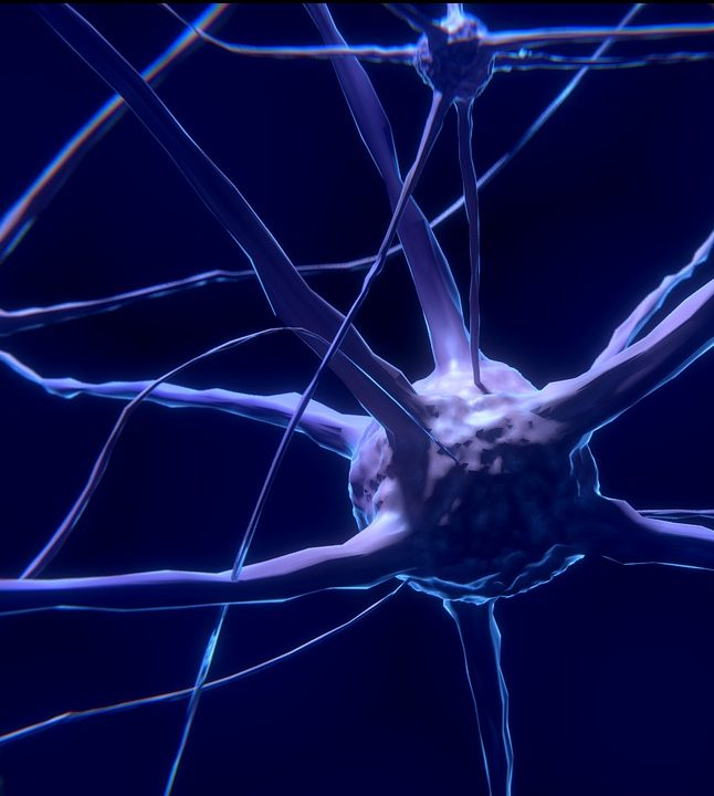 New Research to Stop Alzheimer's Disease and Heal Brain Cells