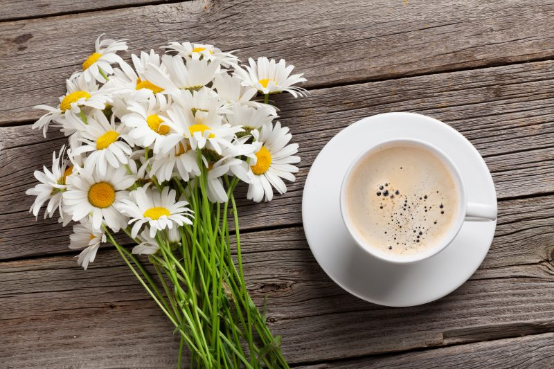 Calming Keto Zone Chamomile Tea