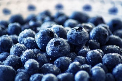 Can Blueberries Lower Blood Pressure? New Studies Shed Light…